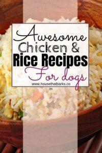 dogs diarrhea recipes