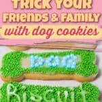 april Fool's Dog Treats