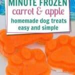 carrot and apple dog treats PIN
