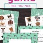 pets game PIN