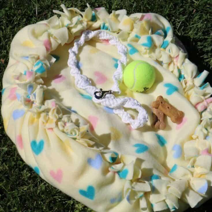 No-Sew Dollar Tree Small Dog or Cat Bed (DIY Dog Bed)