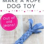 DIY Dog Toy PIN