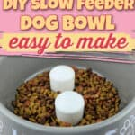 DIY Slow Feeder