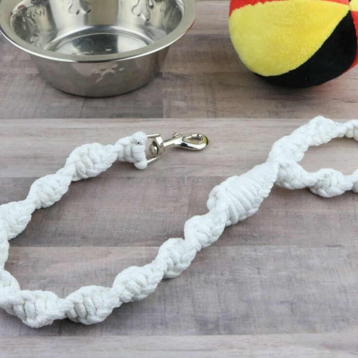 DIY: How to Make a Dog Leash with Clothesline