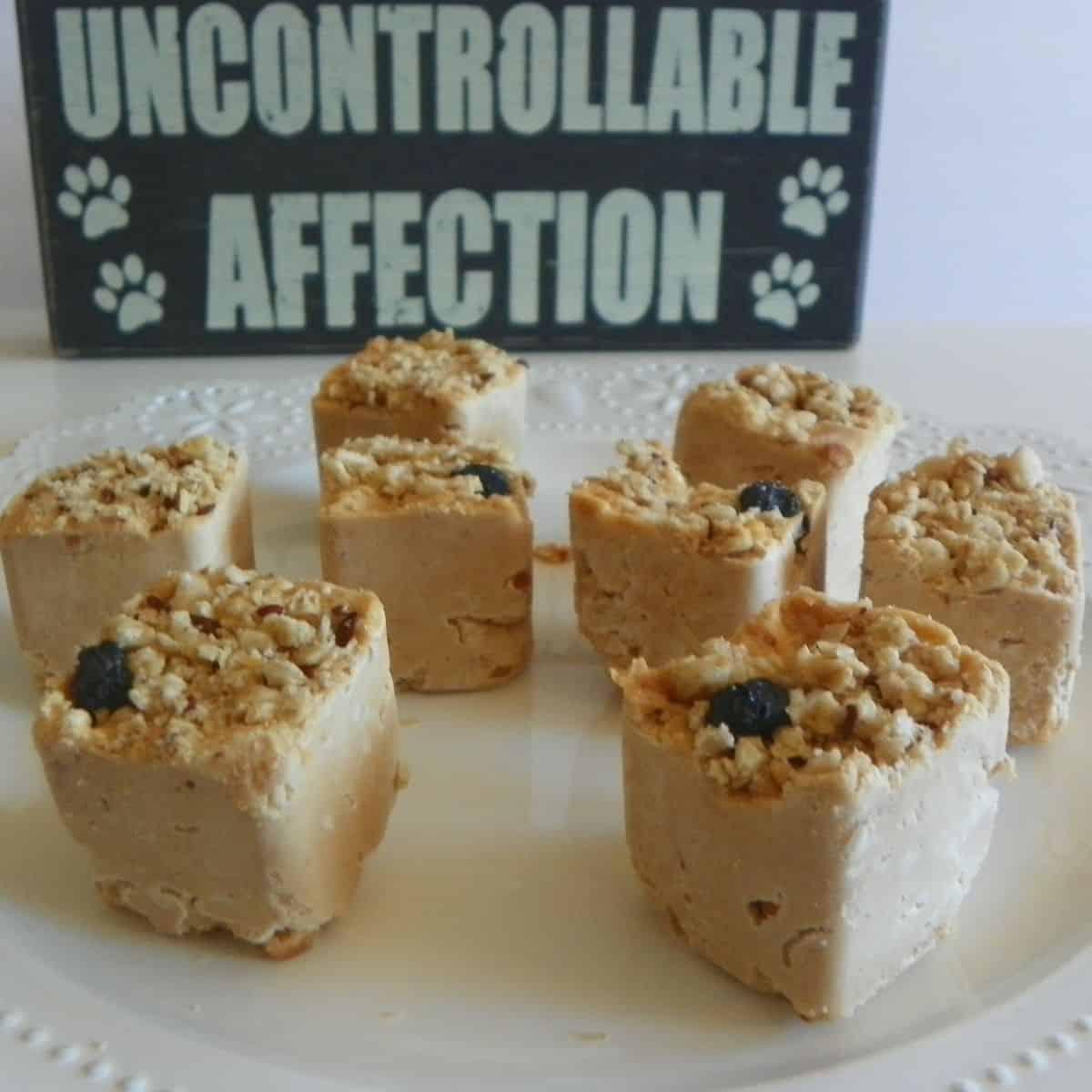 granola and peanut butter frozen dog treats