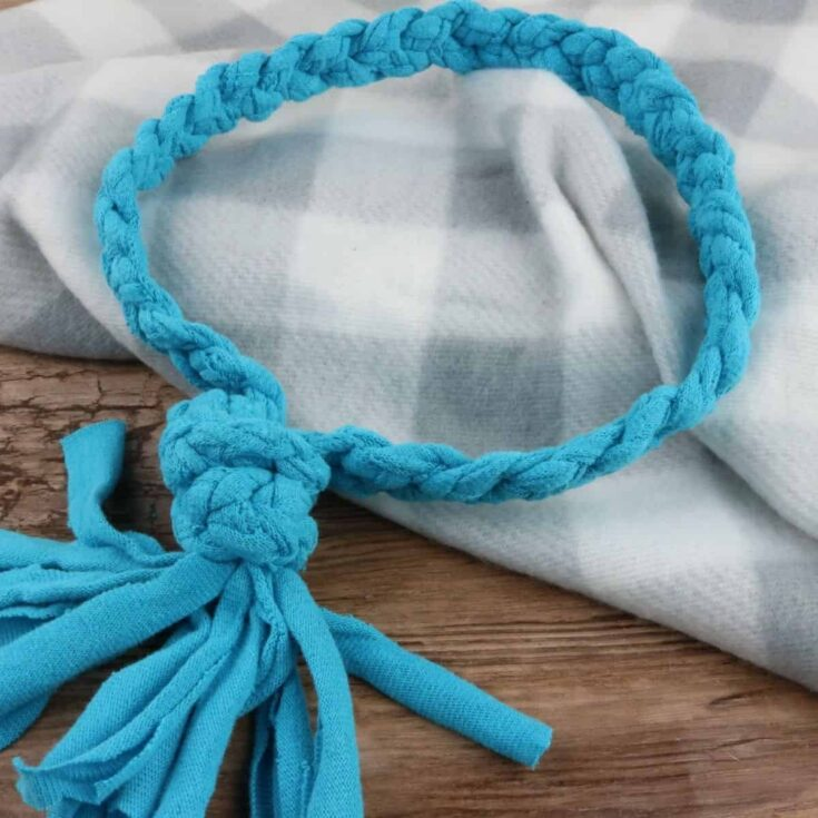 20-Minute No-Sew T-shirt Rope Dog Toy