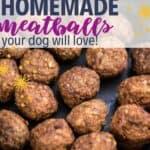 Homemade dog meatballs PIN