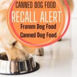 Dog Food Recall: Fromm Canned Dog Food