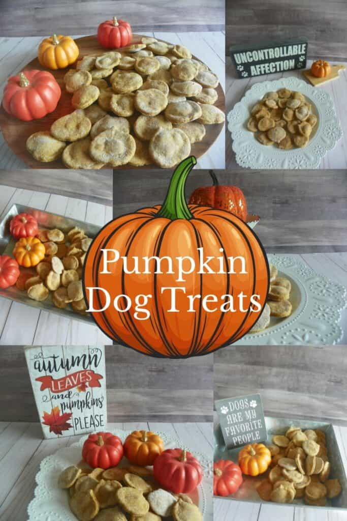 Halloween Pumpkin Dog Treats PIN