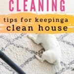 House Cleaning PIN