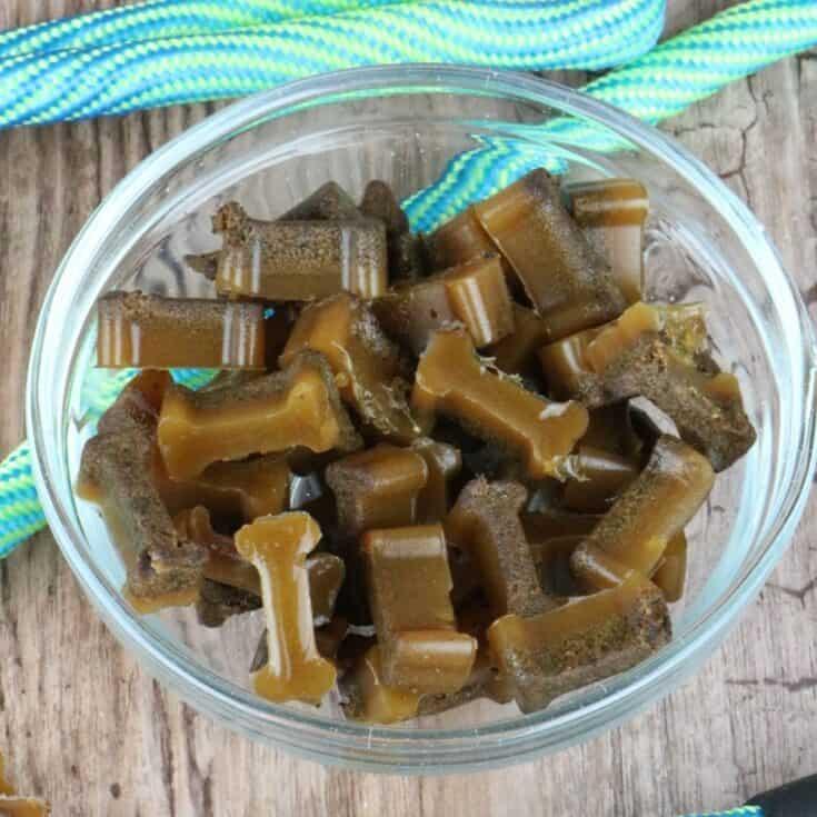 2 Ingredient Liver Gummy Dog Treats