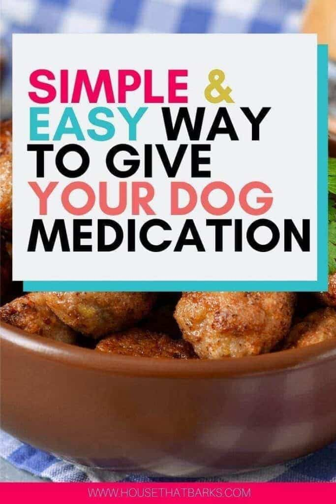 Medicine  Balls for Dogs