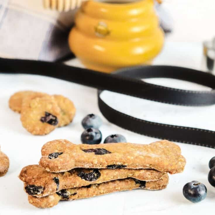 Peanut Butter Blueberry Dog Treats