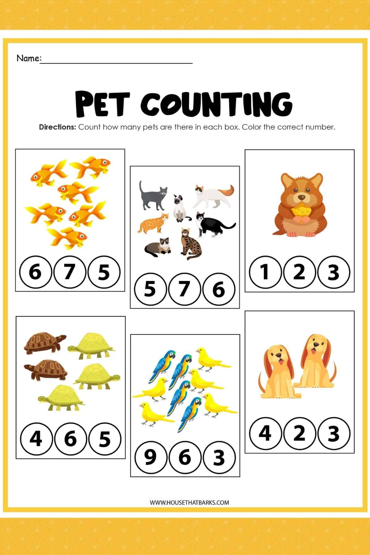 Pet's Activity