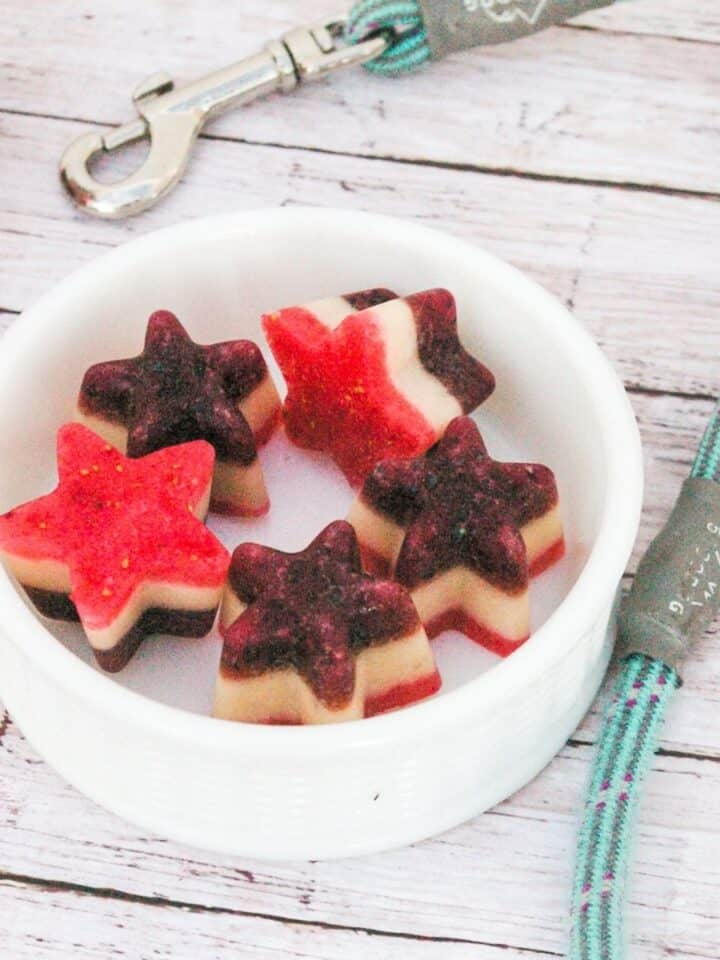 Ruby Red, White And Blue Frozen Dog Treats