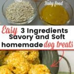 Vet Approved Savory and Soft Dog Treats