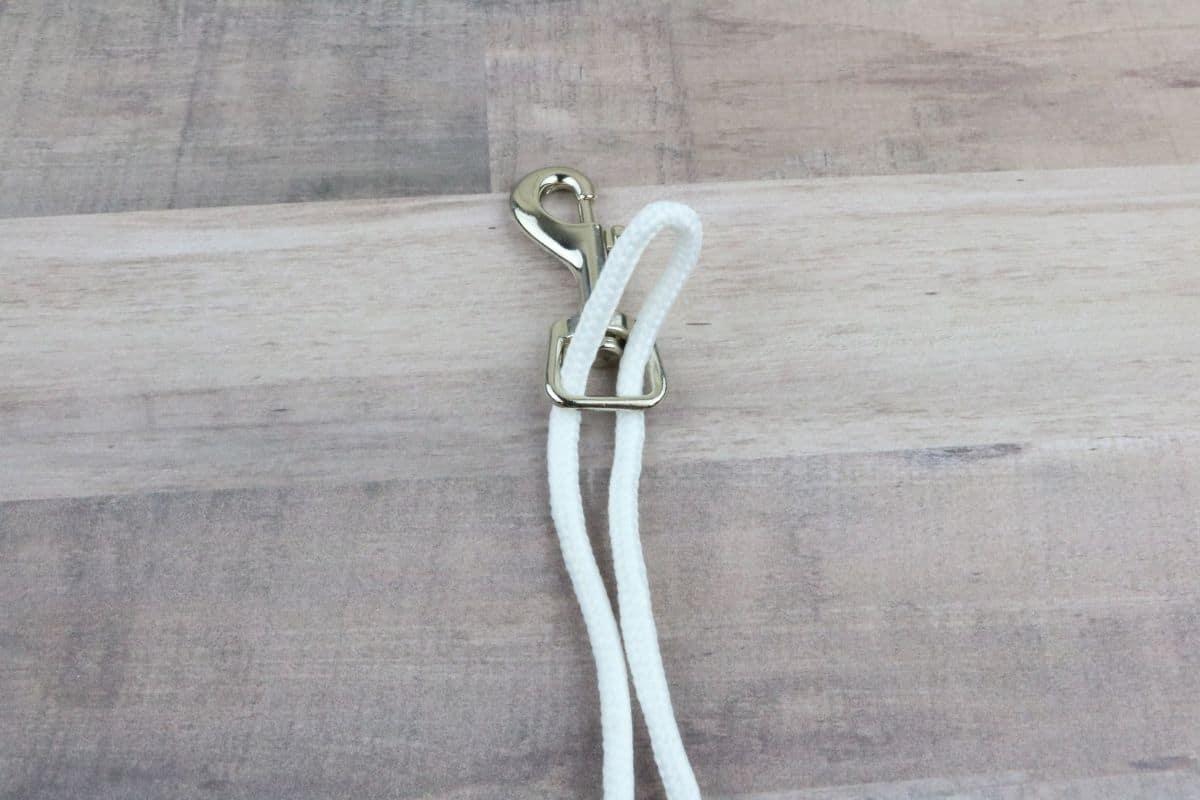 Step two dog leash
