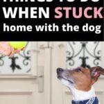 stuck at home