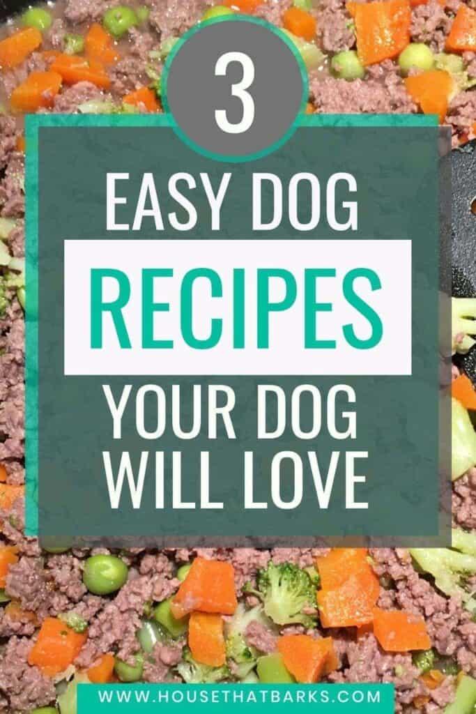 VET APPROVED HOMEMADE DOG FOOD