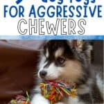 agressive dog toys