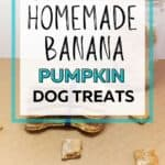 banana pumpkin dog treats PIN