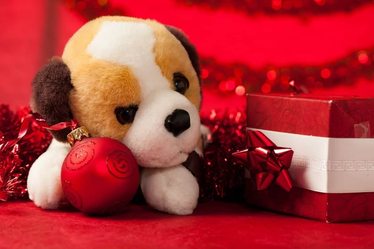 Christmas toys for dogs