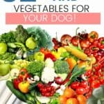 best fruits and vegetables for dogs