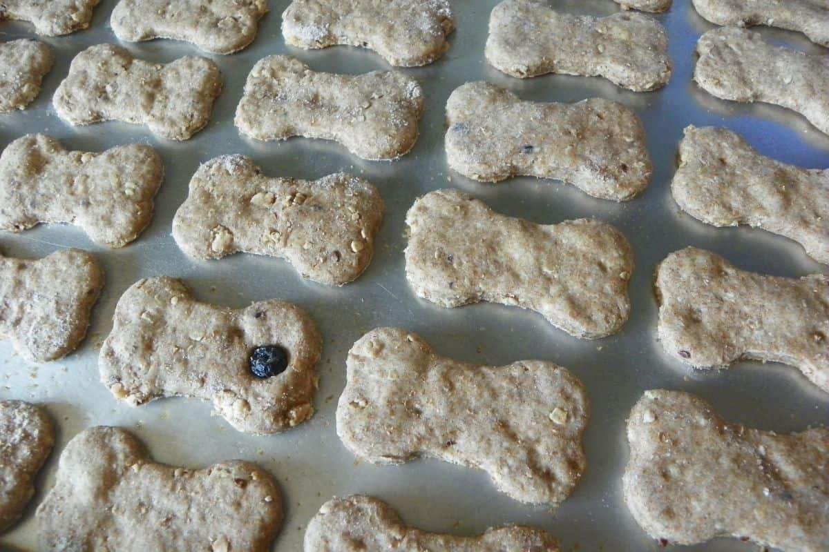 blueberry granola on baking sheet