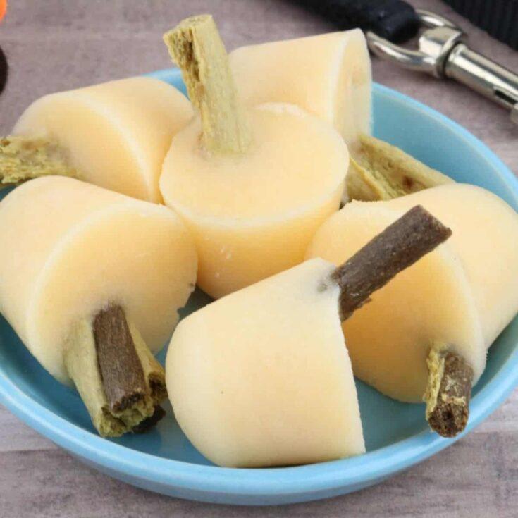 Callie's Cantaloupe and Yogurt Pupsicles