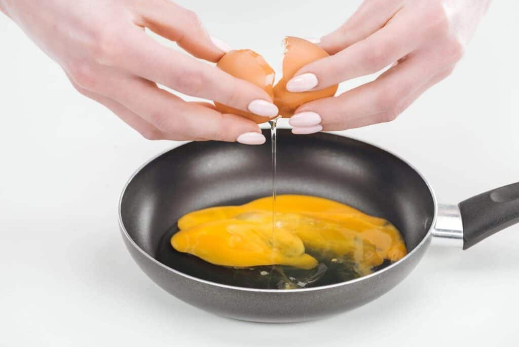 scrambled eggs for dogs