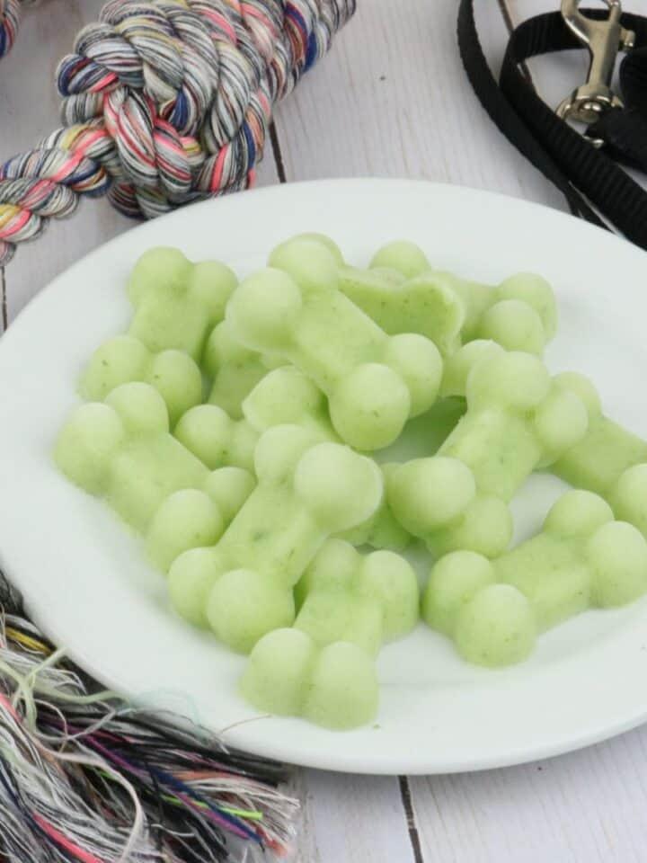 Cucumber Yogurt Frozen Puppy Dog Treats
