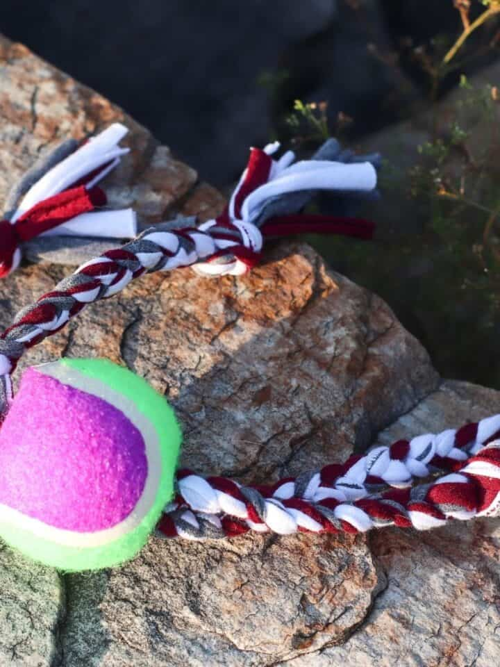 DIY No Sew Upcycled Dog Toys
