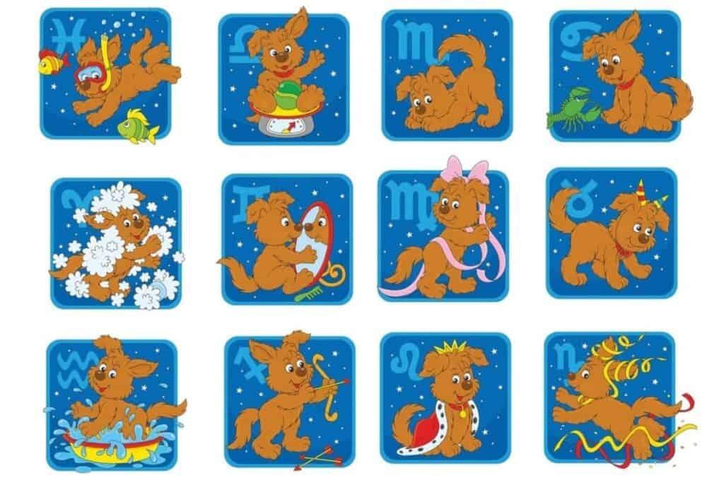 dogs zodiac signs
