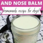 5-Minute DIY Dog Paw Balm for Dry Cracked Paws