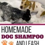 Dog Shampoo Recipes
