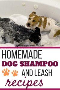 Dog Shampoo Recipes