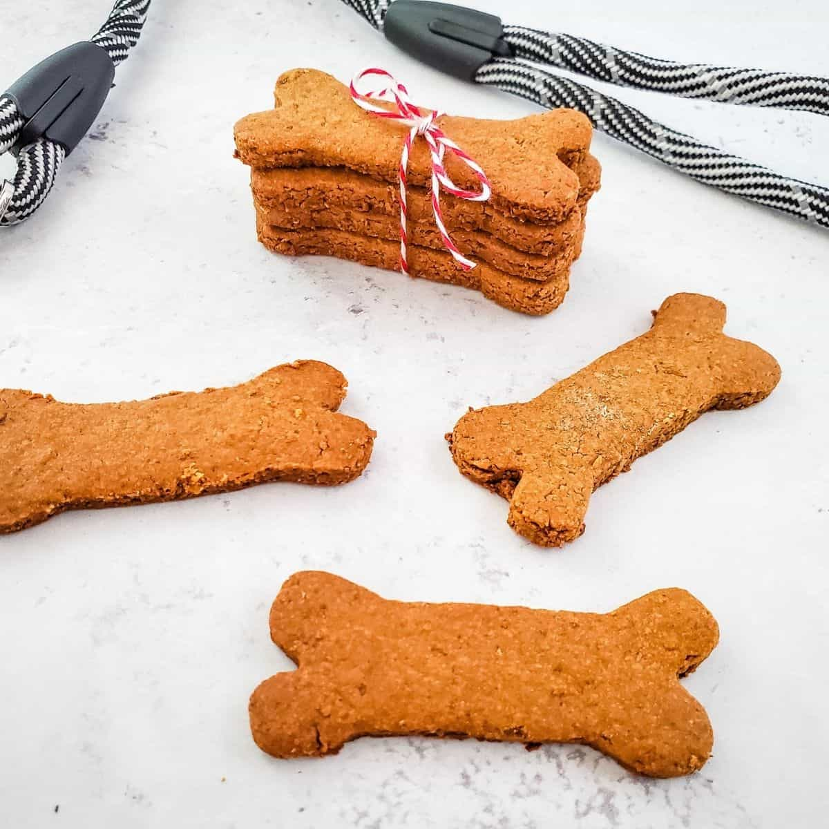 carrot and oatmeal dog treats
