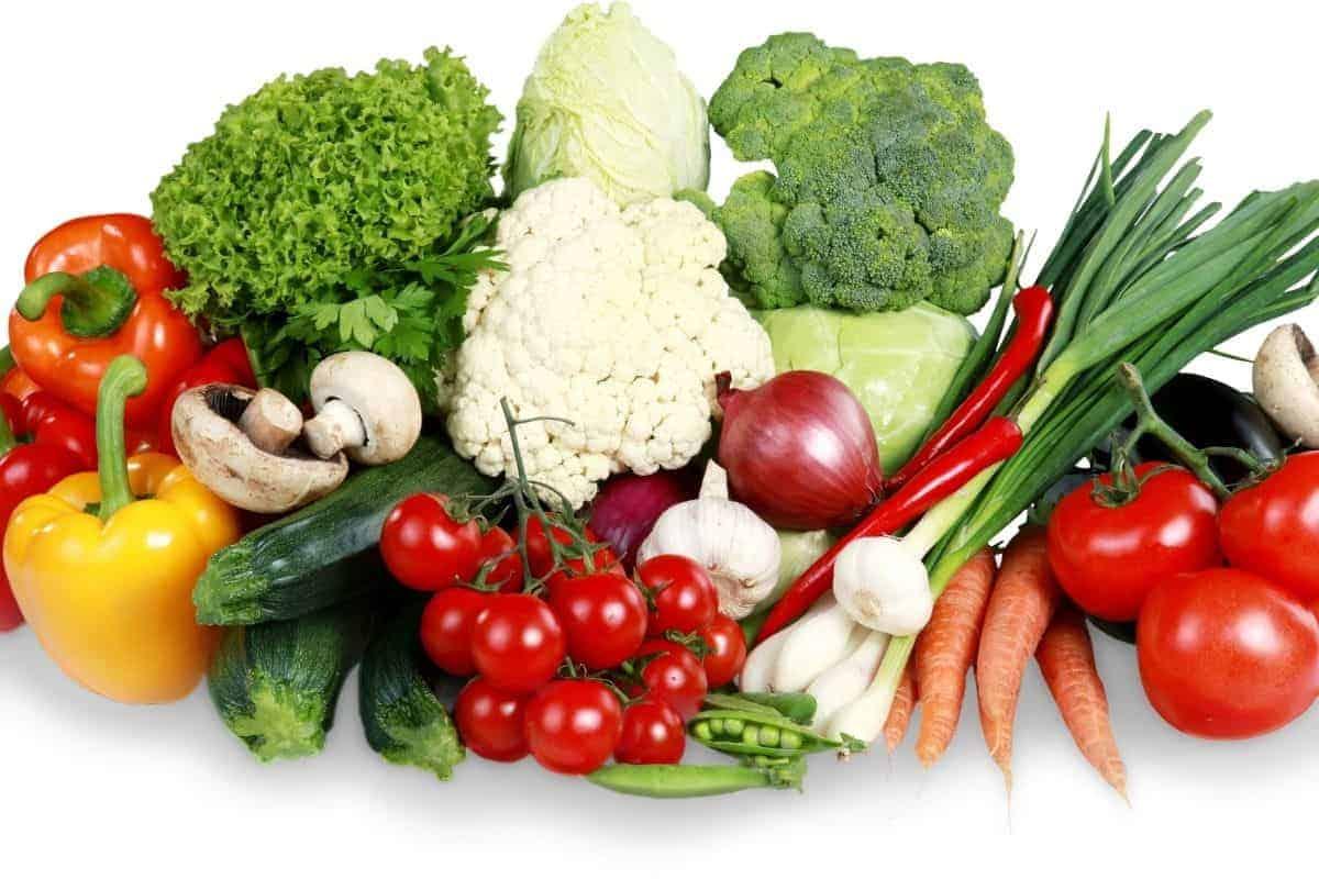 dog vegetables