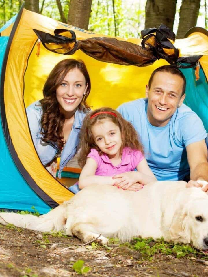 3 Easy Tips to Pet Proof Your Tent While Camping