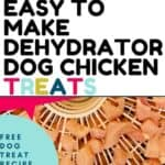 easy to make dehydrated dog chicken treats