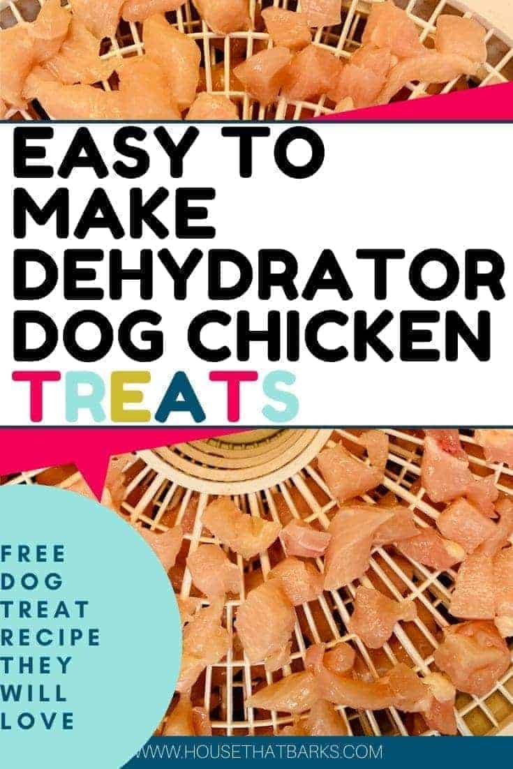 Easy to make Homemade dehydrated dog chicken treats
