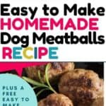 easy to make dog meatballs