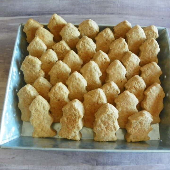 fire hydrant dog biscuits