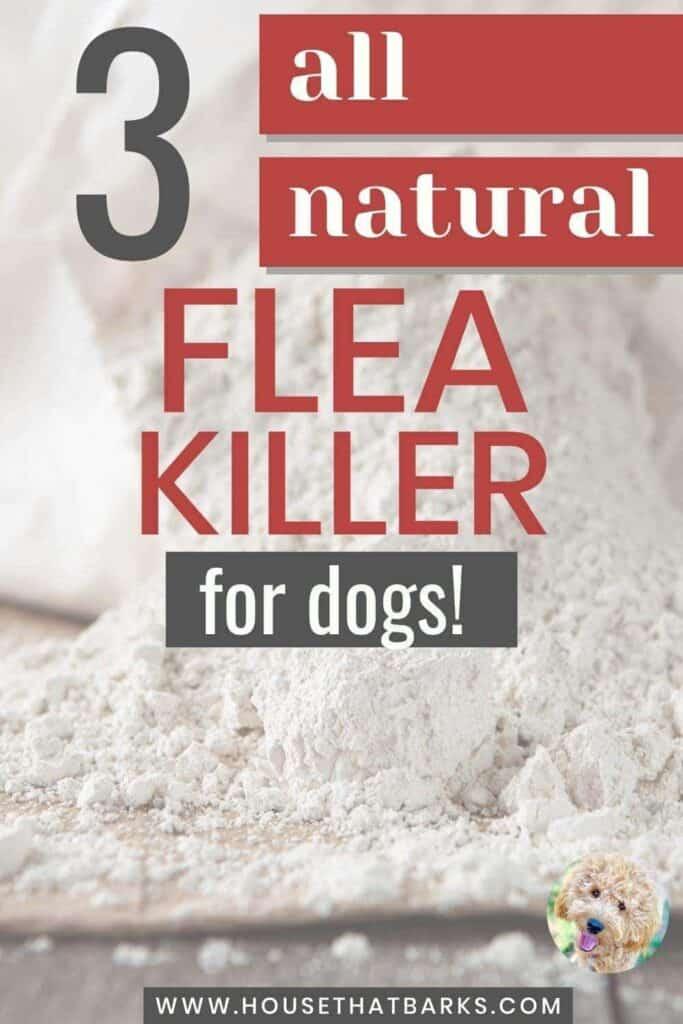 All natural flea killer