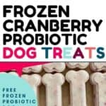 frozen cranberry probiotic dog treat pin 1