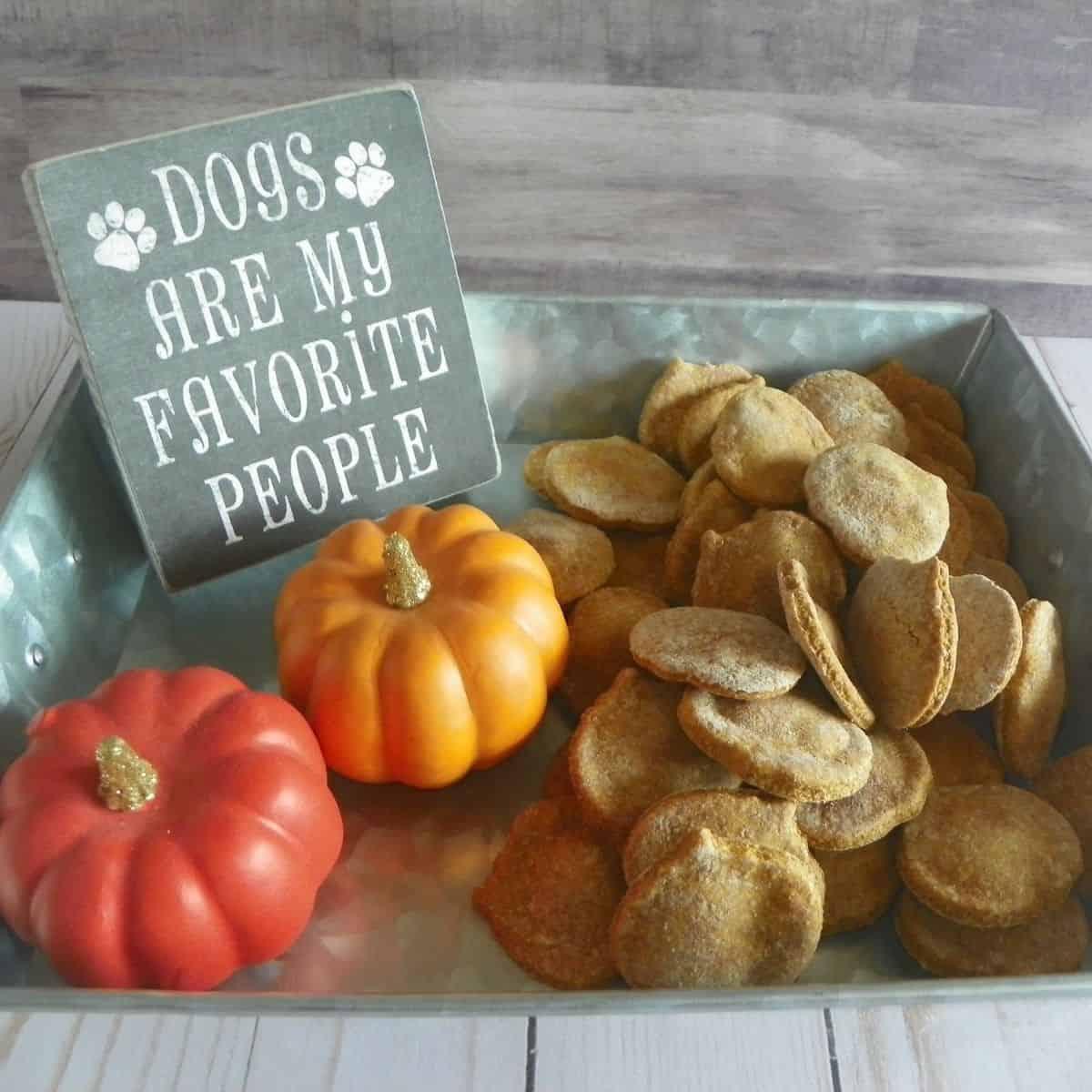 halloween pumpkin dog treats