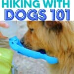 hiking with dogs PIN