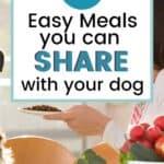 Homemade dog food pin