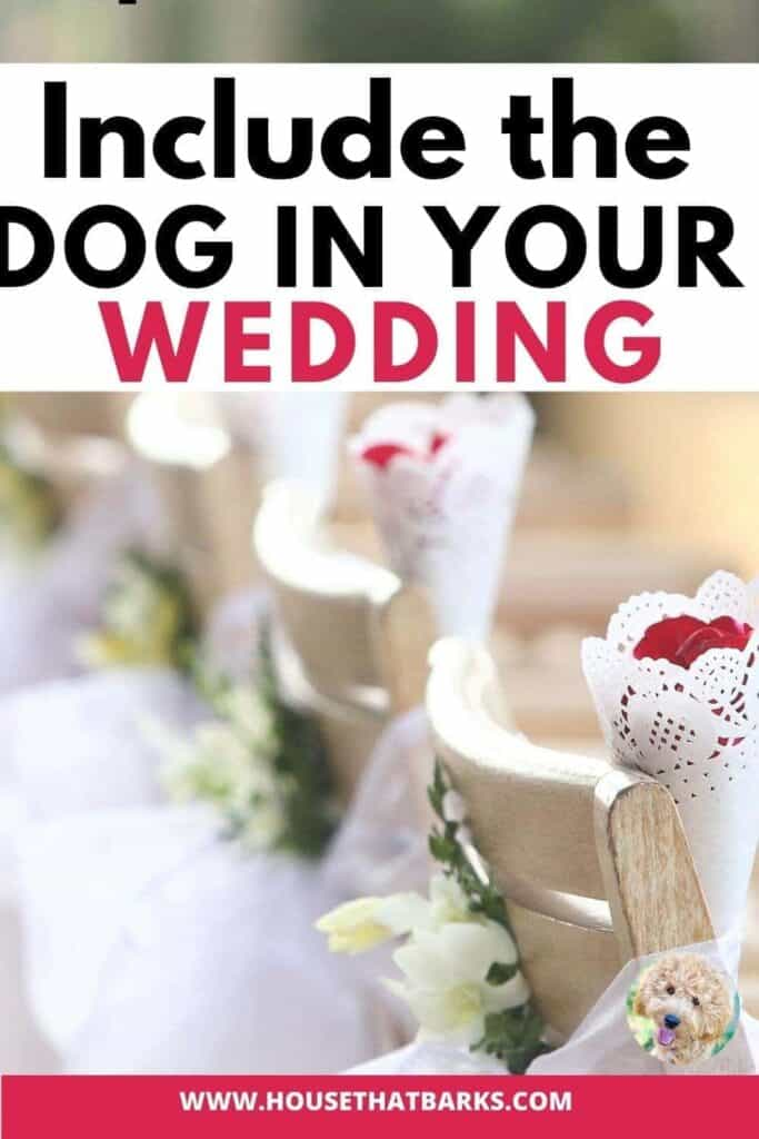 include dogs in weddings