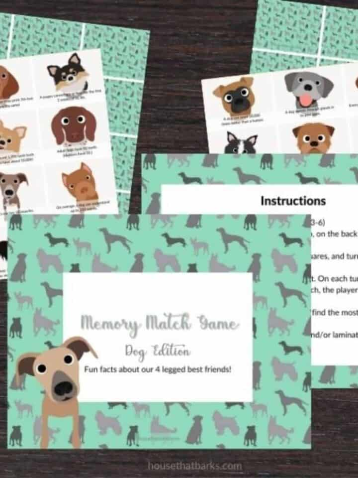 Dog Edition: Pets Memory Matching Game